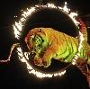 Цирки в Гиагинской